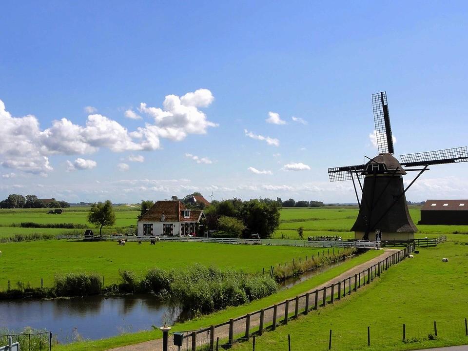 Tłumacz polsko holenderski - tłumaczenia niderlandzkiego