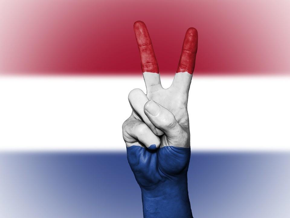 Tłumacz przysięgły języka niderlandzkiego - oferta online