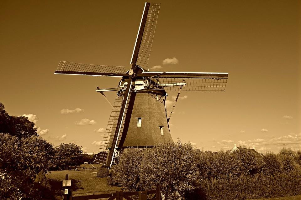 Przekłady niderlandzkiego przez Internet