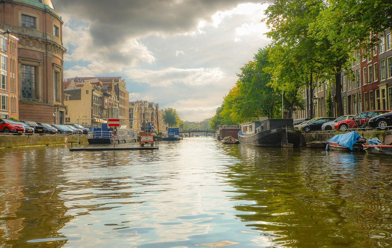 Tłumacz holenderskiego online