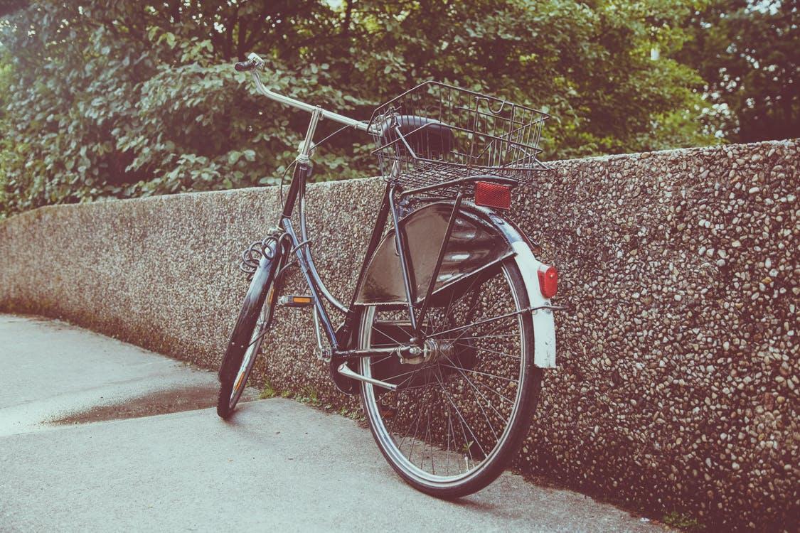 Holandię z pewnością pokochają rowerzyści