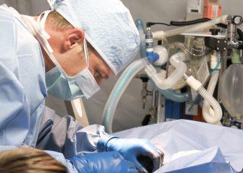 przeklady lekarskie holenderskiego