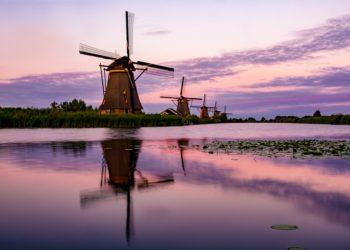 zamowienie tlumaczen niderlandzkiego